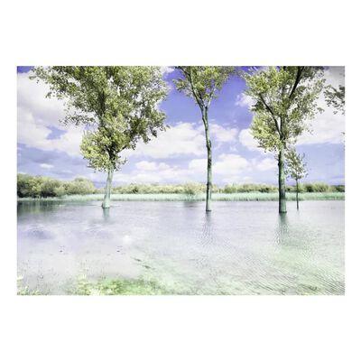 Fototapet - Spring Scenery - 350x245 Cm