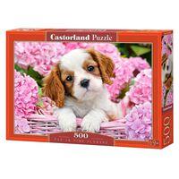 Castorland, Pussel, 500 bitars, Pup in Pink Flowers
