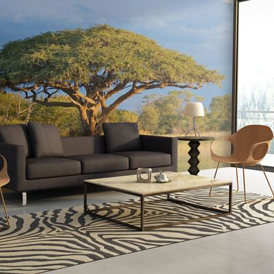 Fototapet - Afrikansk Akacia Träd,  Zimbabwe - 300x231 Cm