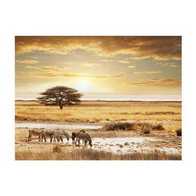 Fototapet - Afrikanska Zebror Runt Vattenhål - 250x193 Cm