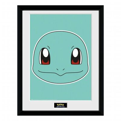 Pokémon, Tavla - Squirtle Face,