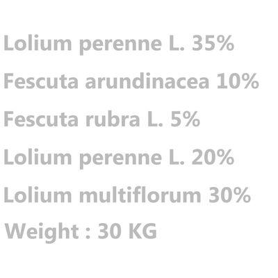 vidaXL Gräsfrön för sport och lek 30 kg