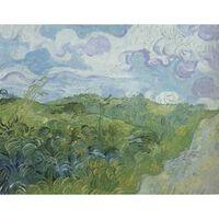 Green Wheat Fields,Vincent Van Gogh,60x50cm