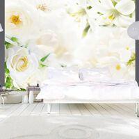 Fototapet - White Sigh - 300x210 Cm