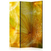 Rumsavdelare - Soft Dandelion Flower   - 135x172 Cm