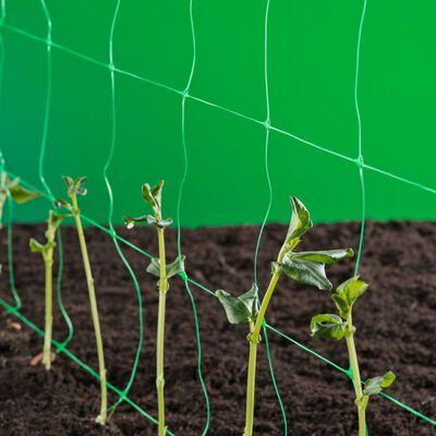 Nature Nät för klätterväxter grön 1x10 m 6030429