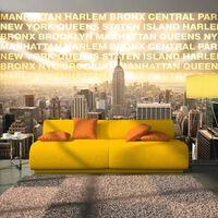 Fototapet - Neighborhoods Of New York - 250x175 Cm