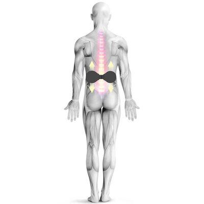 Medisana Massagerulle med bollar VarioRoll 10x24 cm svart