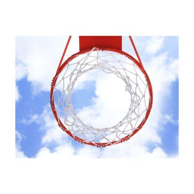 Fototapet - Basketball - 300x231 Cm