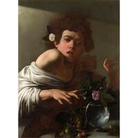 Boy Bitten by a Lizard,Caravaggio,50x37cm