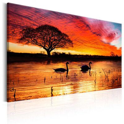 Tavla - Swan Lake - 90x60 Cm