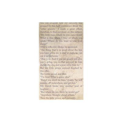 Fototapet - The Little Prince - Spiritual Journey - 50x1000 Cm