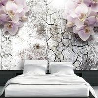 Fototapet - Bright Red Orchids - 150x105 Cm