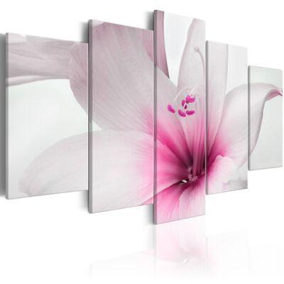 Tavla - Amarylis: Pink Charm - 200x100 Cm