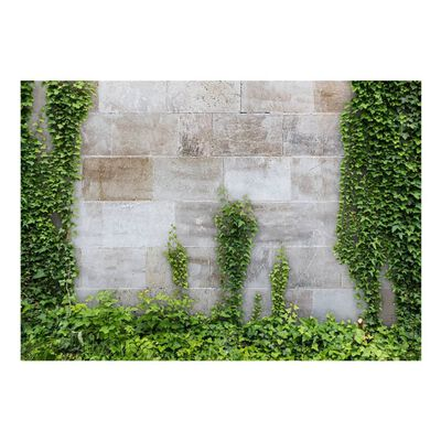Fototapet - The Forgotten Garden - 350x245 Cm