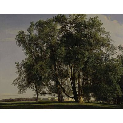 Prater Landscape,Ferdinand Georg Waldmuller,50x40cm