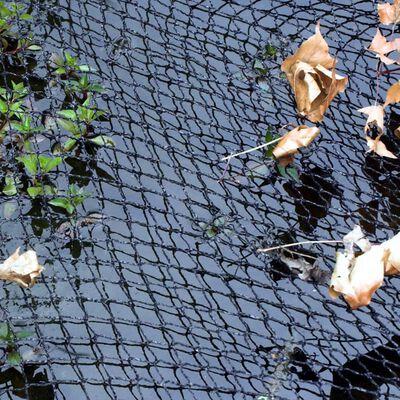 Velda Skyddsnät 6 x 5 m för dammar