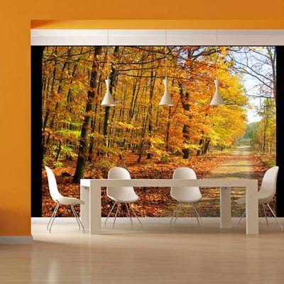 Fototapet - Beech Forest - 300x231 Cm