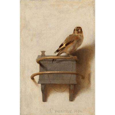 The Goldfinch,FABRITIUS Carel,33.5x22.8cm