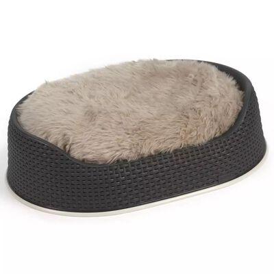 Curver Hundkorg 67x49x16 cm antracit 700320
