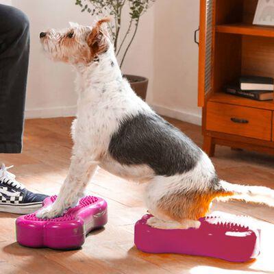 FitPAWS Balansplatta för husdjur Mini K9FITbone 2-pack 29x16,5x6 cm
