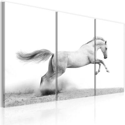 Tavla - A Galloping Horse - 60x40 Cm