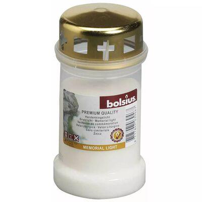Bolsius Gravljus med lock 12 st genomskinlig 103620188000
