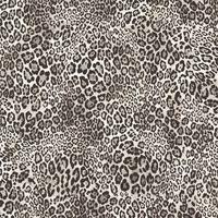 Noordwand Tapet Leopard Print svart