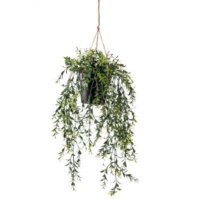 Emerald Konstväxt buxbom i kruka hängande 50 cm