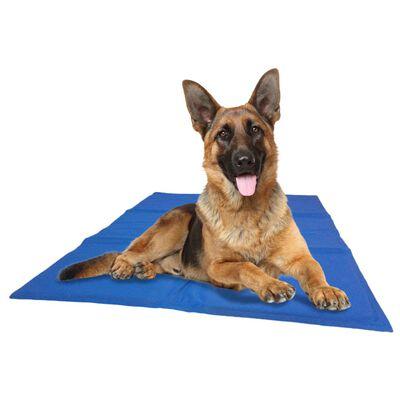 @Pet Kylmatta hund blå M 50x65 cm