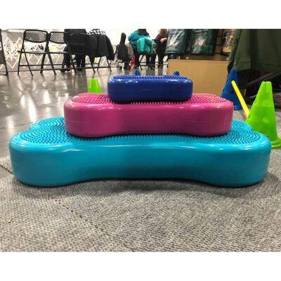 FitPAWS Balansplatta för husdjur Giant K9FITbone PVC aqua, Aqua