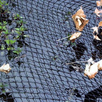 Velda skyddsnät 4 x 3 m för dammar
