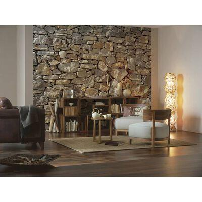 Komar Fototapet Stone Wall 368x254 cm 8-727