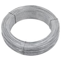 vidaXL Stagtråd 250 m 2 mm stål