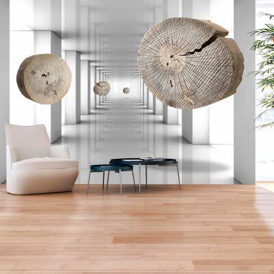Fototapet - Inventive Corridor - 250x175 Cm