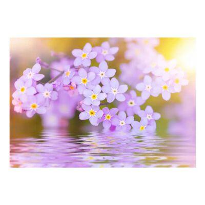Fototapet -  Violet Petals In Bloom - 100x70 Cm
