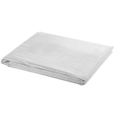 vidaXL Stativ och fotobakgrund 600x300 cm vit