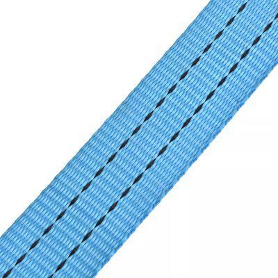 vidaXL Lastspännare med spärr 10 st 2 ton 6mx38mm blå