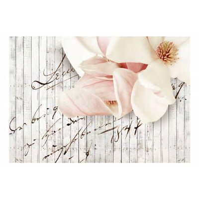 Fototapet - Love Letter - 200x140 Cm