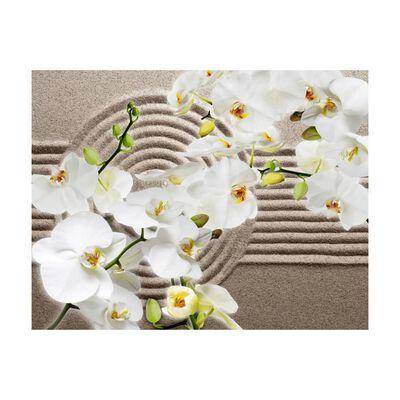 Fototapet - Beautiful Zen Garden - 300x231 Cm,