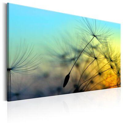 Tavla - Ballad Of The Wind - 60x40 Cm