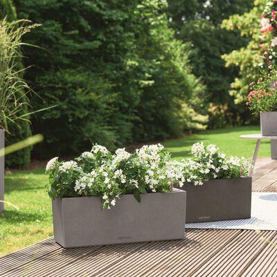 LECHUZA Odlingsenhet BALCONERA Color 50 ALL-IN-ONE grå