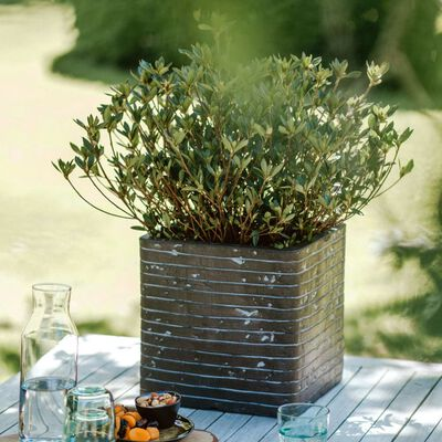 Capi Kruka Nature Row fyrkantig 30x30x30 cm olivgrön