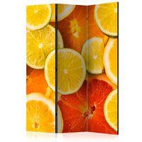 Rumsavdelare - Citrus Fruits   - 135x172 Cm
