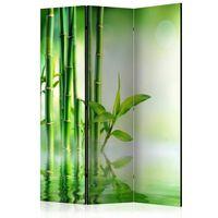 Rumsavdelare - Green Bamboo   - 135x172 Cm