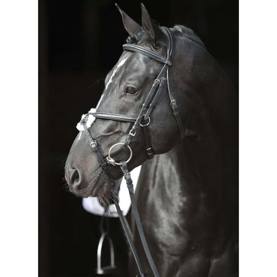 Covalliero Nosgrimma Cancun ponny svart