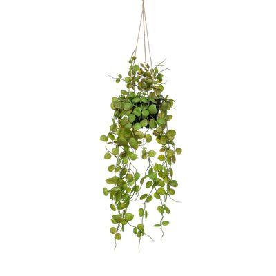 Emerald Konstväxt ceropegia i kruka hängande 50 cm