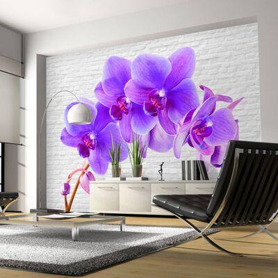 Fototapet - Violet Excitation - 300x210 Cm
