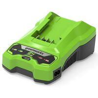 Greenworks Batteriladdare 24 V 2 A