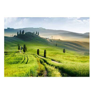 Fototapet - Morning In The Countryside - 250x175 Cm